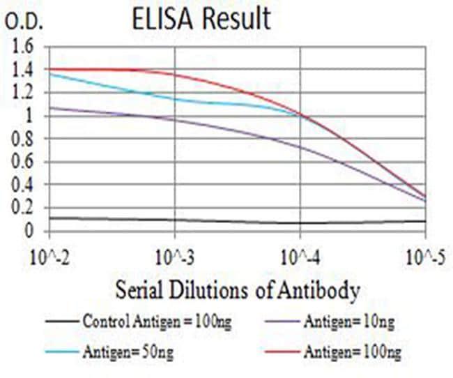 CHRNA7 Antibody in ELISA (ELISA)