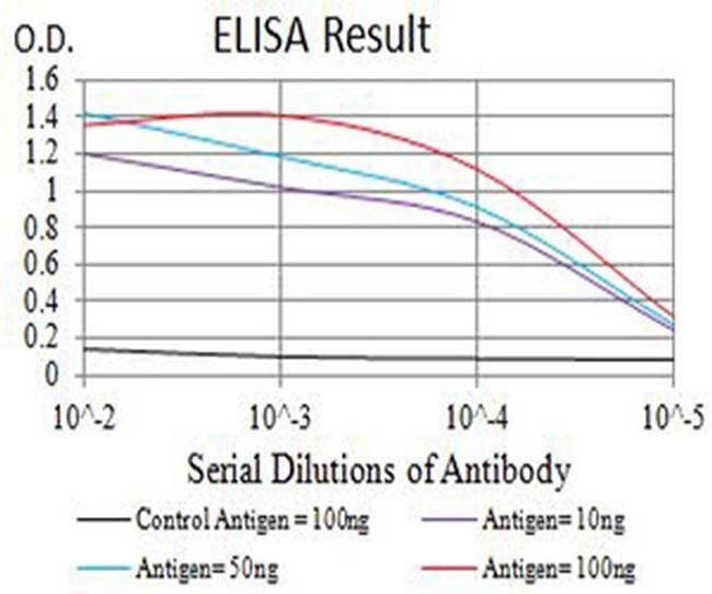CHRNB2 Antibody in ELISA (ELISA)