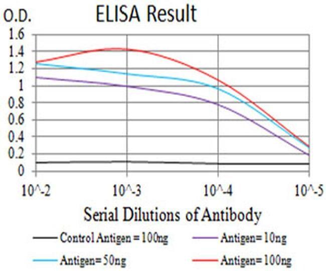 CHRND Antibody in ELISA (ELISA)
