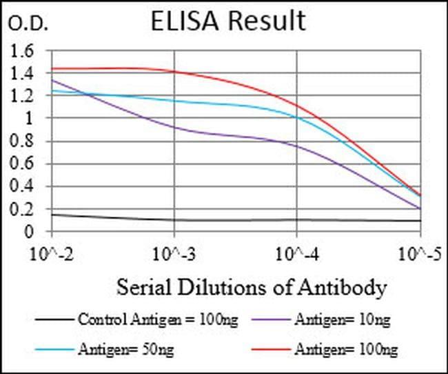 CK2 beta Antibody in ELISA (ELISA)