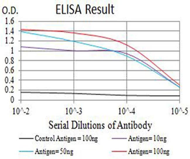 GluR7 Antibody in ELISA (ELISA)