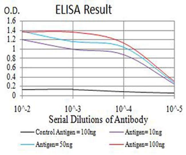 mGluR7 Antibody in ELISA (ELISA)