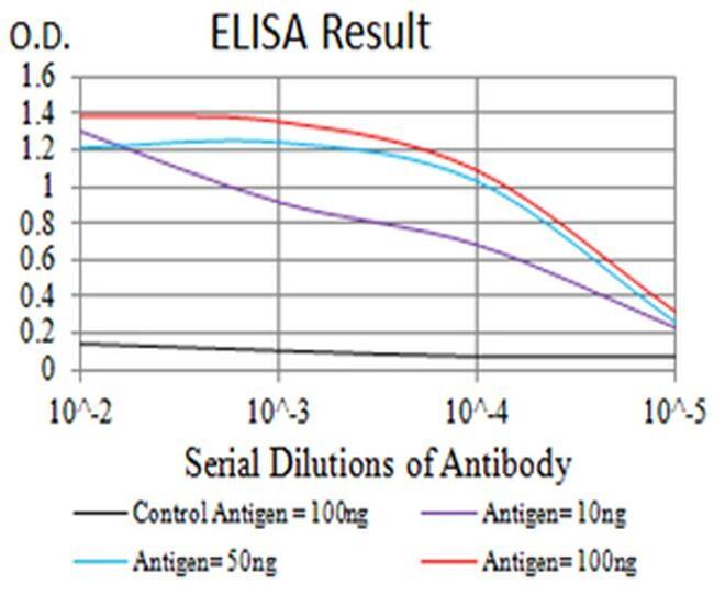 HTR3A Antibody in ELISA (ELISA)