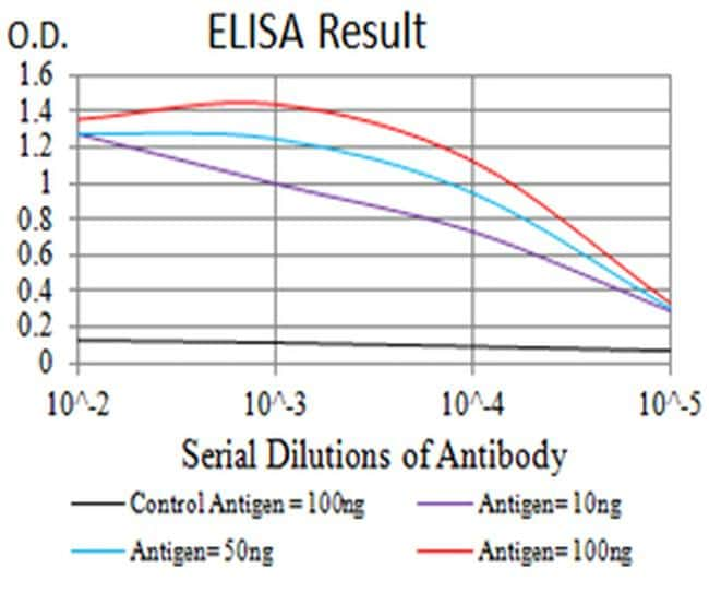 HTR3B Antibody in ELISA (ELISA)