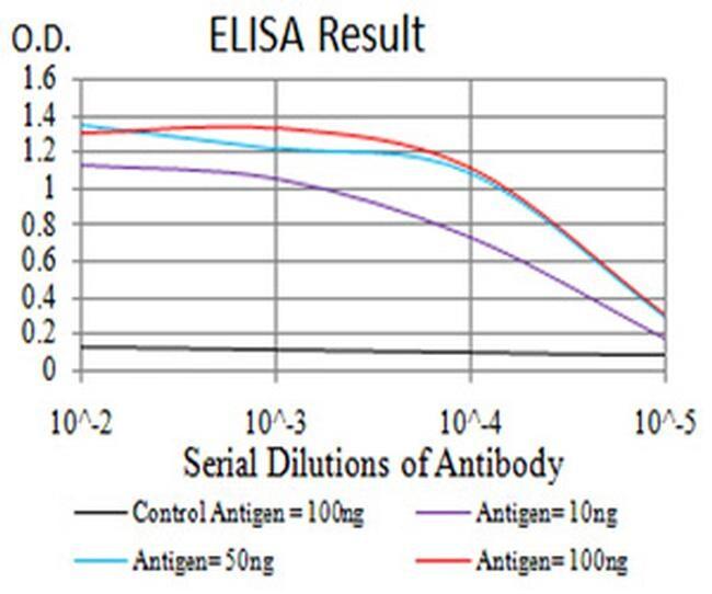 IL1RAPL1 Antibody in ELISA (ELISA)