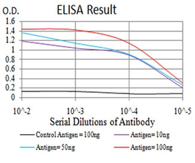 KLF6 Antibody in ELISA (ELISA)