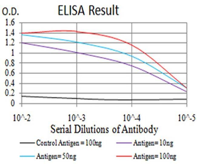 P2X7 Antibody in ELISA (ELISA)