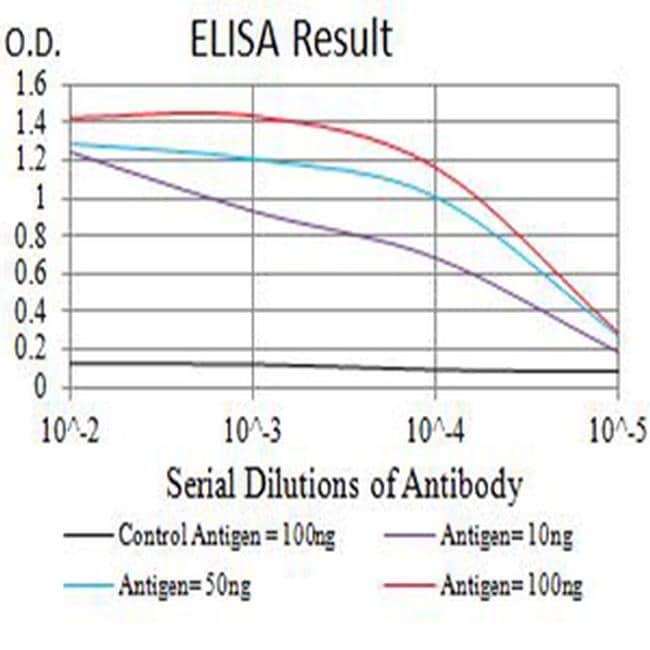 AS160 Antibody in ELISA (ELISA)