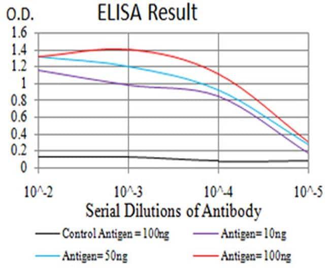 TRIM25 Antibody in ELISA (ELISA)