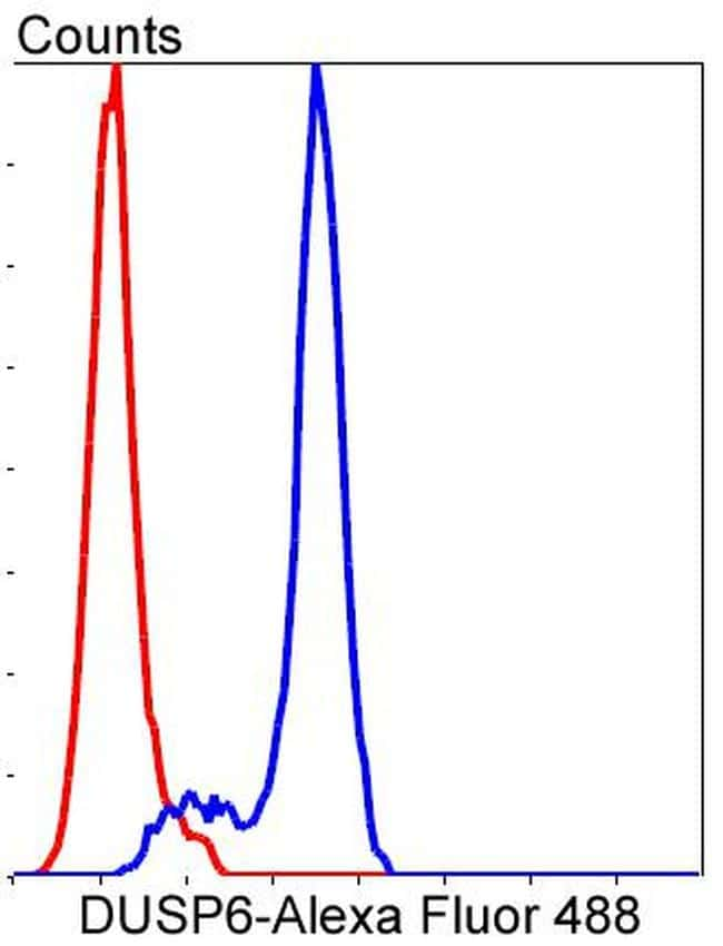 MKP3 Antibody in Flow Cytometry (Flow)