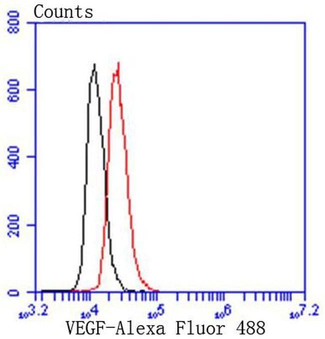 VEGF Antibody in Flow Cytometry (Flow)
