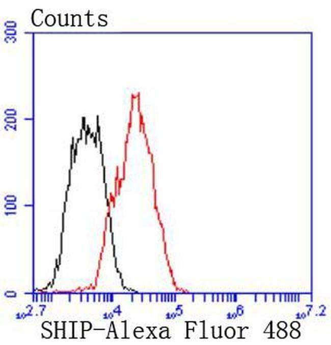 SHIP1 Antibody in Flow Cytometry (Flow)