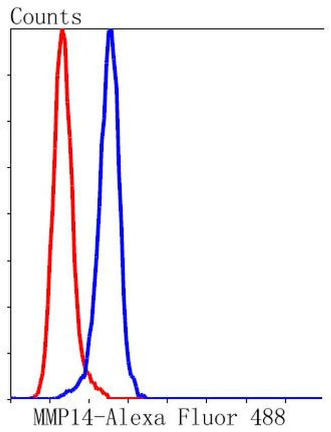 MMP14 Antibody in Flow Cytometry (Flow)