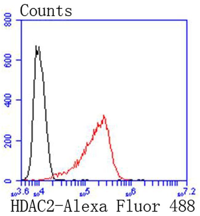 HDAC2 Antibody in Flow Cytometry (Flow)