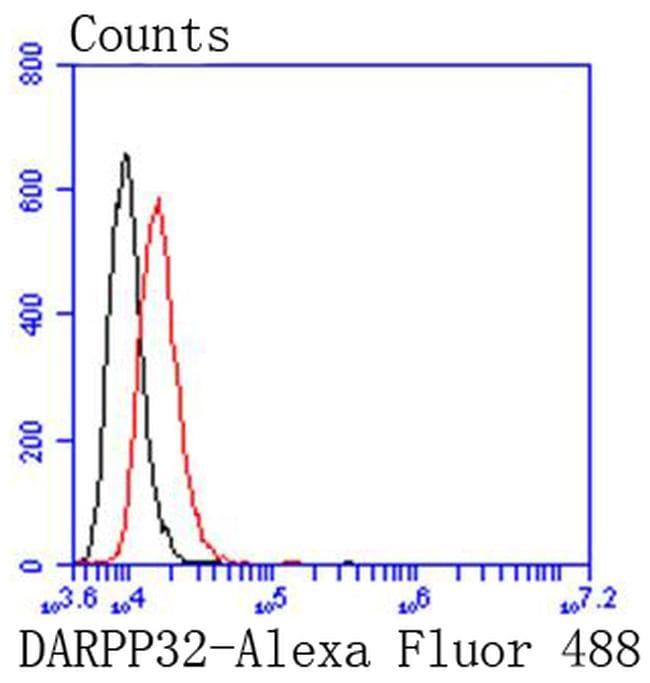 DARPP-32 Antibody in Flow Cytometry (Flow)