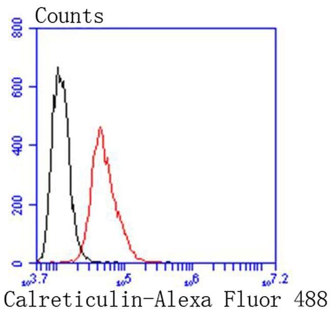 Calreticulin Antibody in Flow Cytometry (Flow)