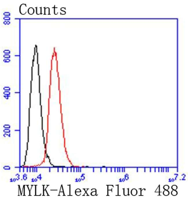 MYLK Antibody in Flow Cytometry (Flow)