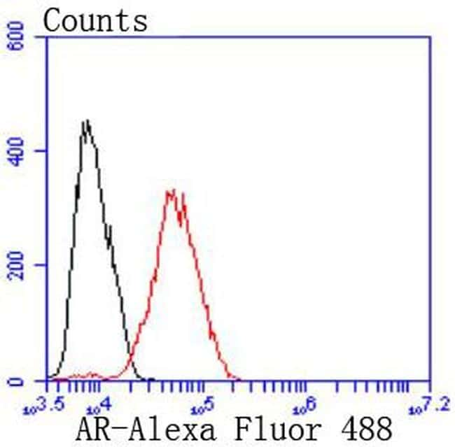 Androgen Receptor Antibody in Flow Cytometry (Flow)