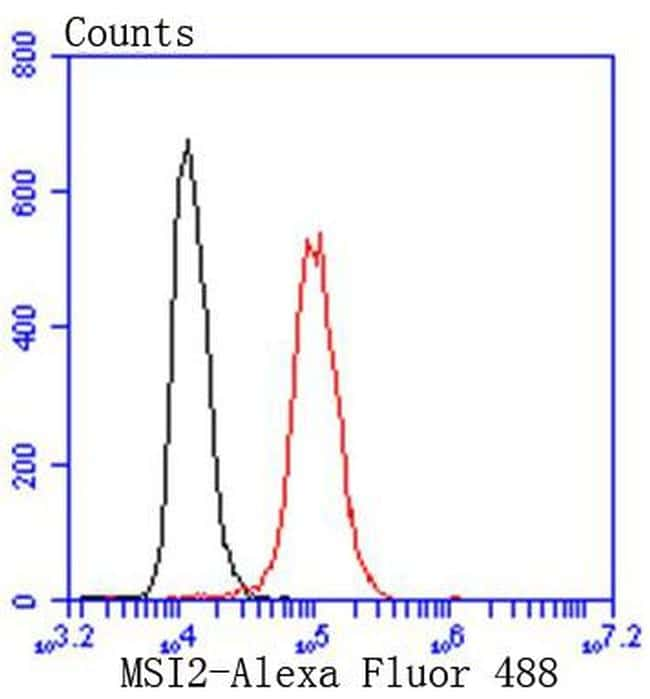 Musashi-2 Antibody in Flow Cytometry (Flow)