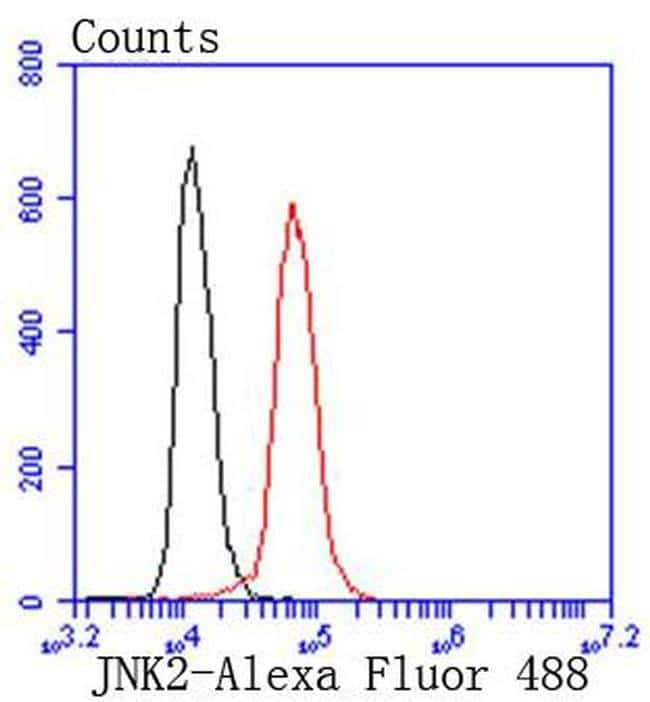 JNK2 Antibody in Flow Cytometry (Flow)