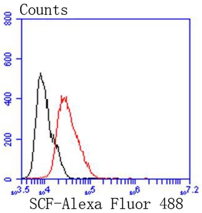 SCF Antibody in Flow Cytometry (Flow)