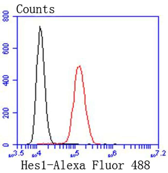 HES1 Antibody in Flow Cytometry (Flow)