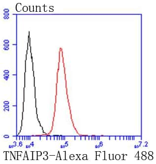 TNFAIP3 Antibody in Flow Cytometry (Flow)