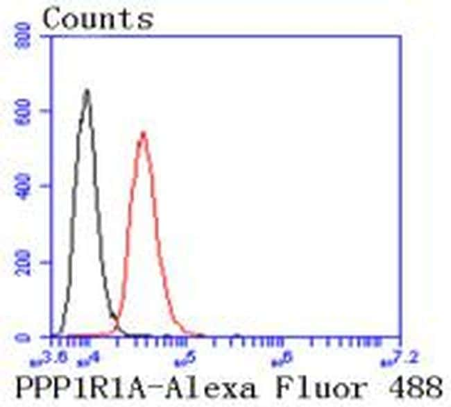 PPP1R1A Antibody in Flow Cytometry (Flow)