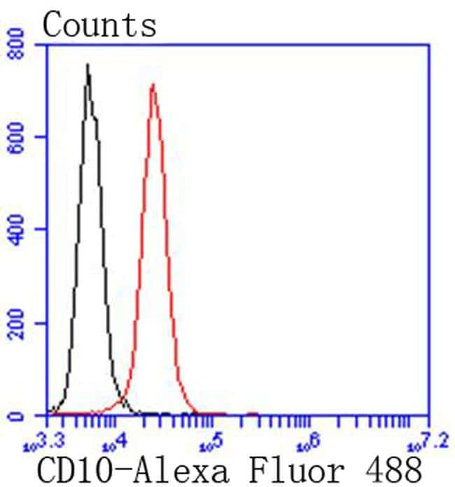 CD10 Antibody in Flow Cytometry (Flow)
