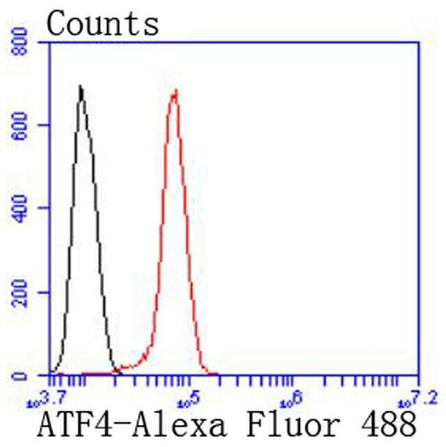 ATF4 Antibody in Flow Cytometry (Flow)