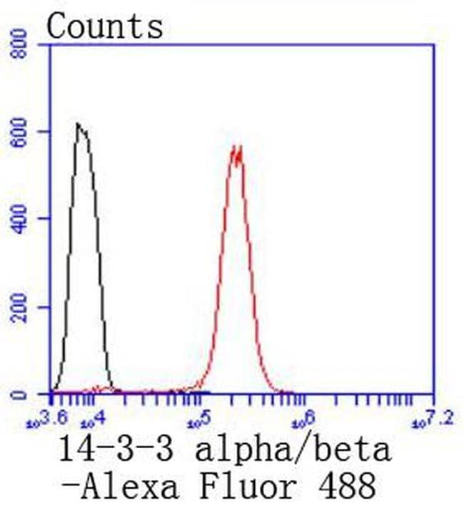 14-3-3 beta Antibody in Flow Cytometry (Flow)