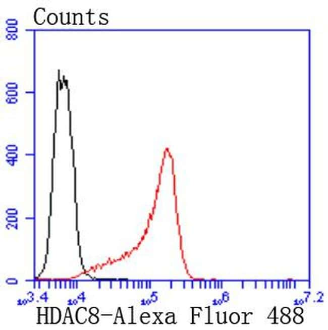HDAC8 Antibody in Flow Cytometry (Flow)