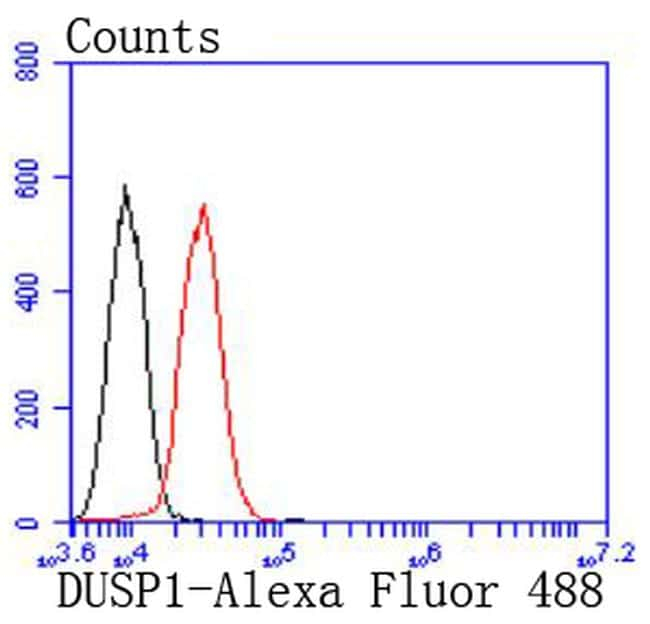 MKP-1 Antibody in Flow Cytometry (Flow)