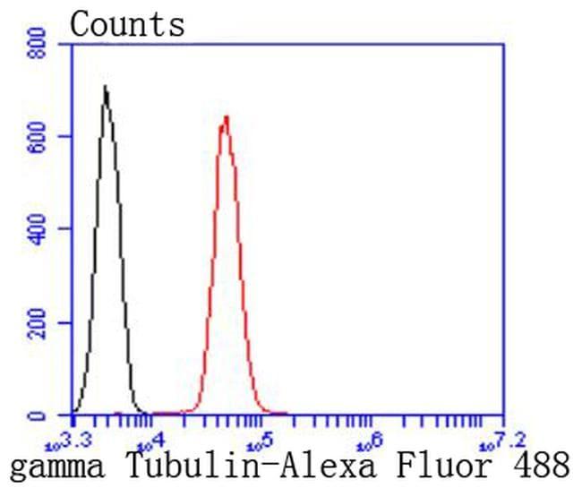 gamma Tubulin Antibody in Flow Cytometry (Flow)