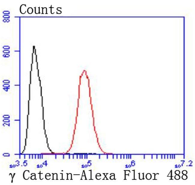 gamma Catenin Antibody in Flow Cytometry (Flow)