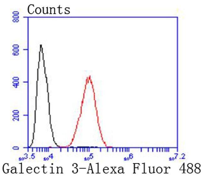 Galectin 3 Antibody in Flow Cytometry (Flow)