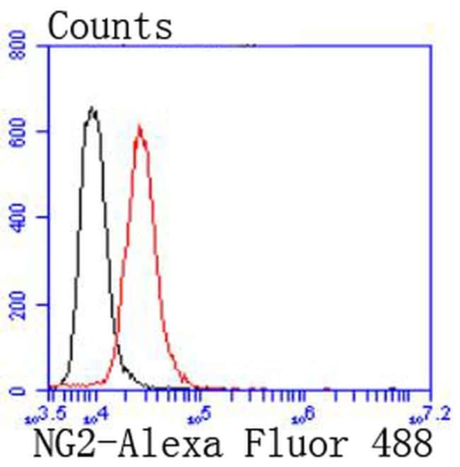 Neural/Glial Antigen 2 (NG2) Antibody in Flow Cytometry (Flow)