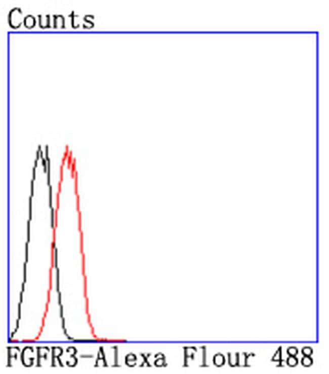 FGFR3 Antibody in Flow Cytometry (Flow)