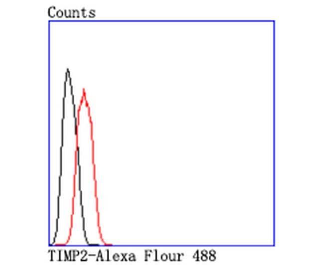 TIMP2 Antibody in Flow Cytometry (Flow)