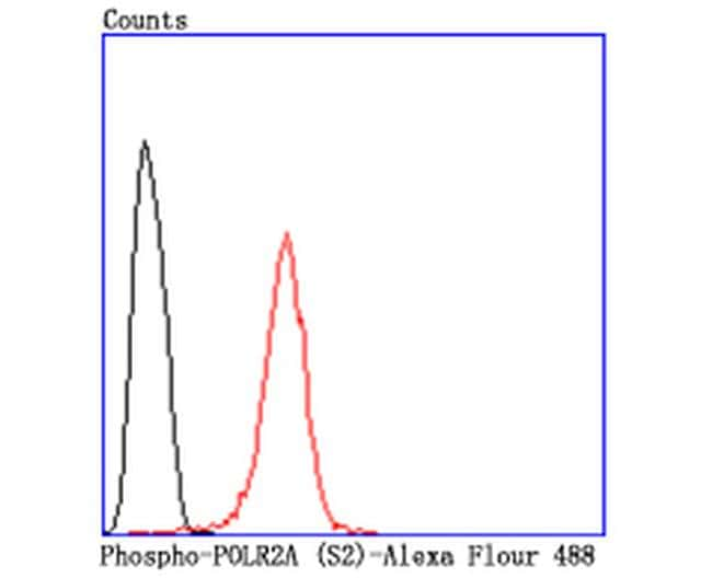 Phospho-RNA pol II CTD (Ser2) Antibody in Flow Cytometry (Flow)