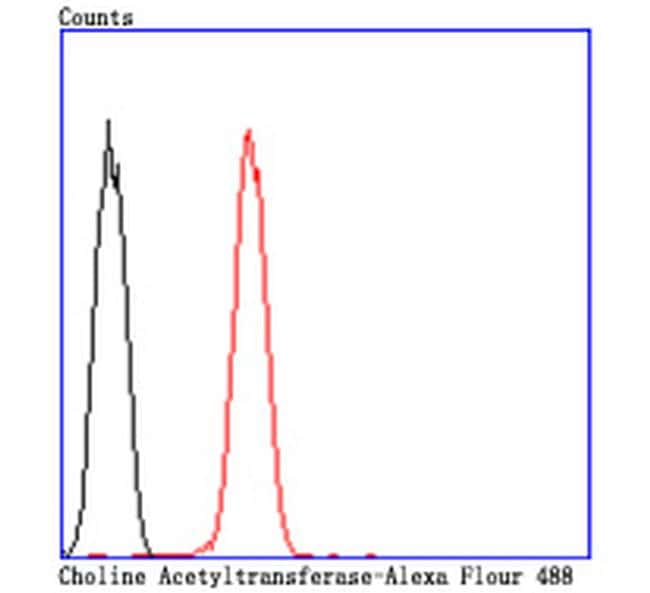 ChAT Antibody in Flow Cytometry (Flow)