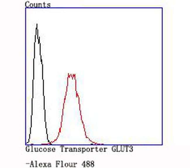 GLUT3 Antibody in Flow Cytometry (Flow)