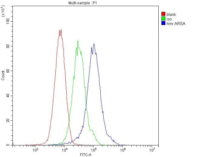 Arylsulfatase A Antibody in Flow Cytometry (Flow)