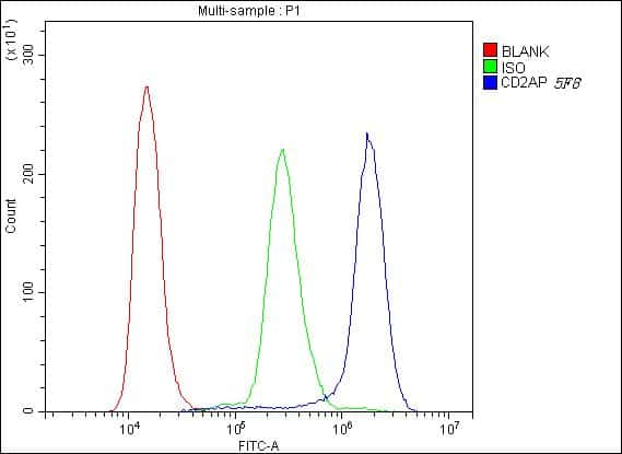 CD2AP Antibody in Flow Cytometry (Flow)