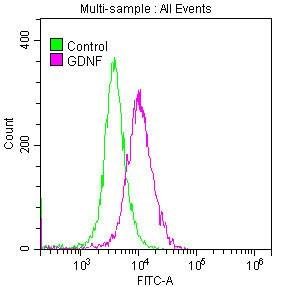 GDNF Antibody in Flow Cytometry (Flow)