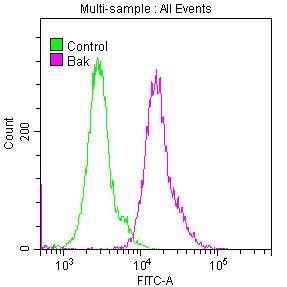 BAK Antibody in Flow Cytometry (Flow)
