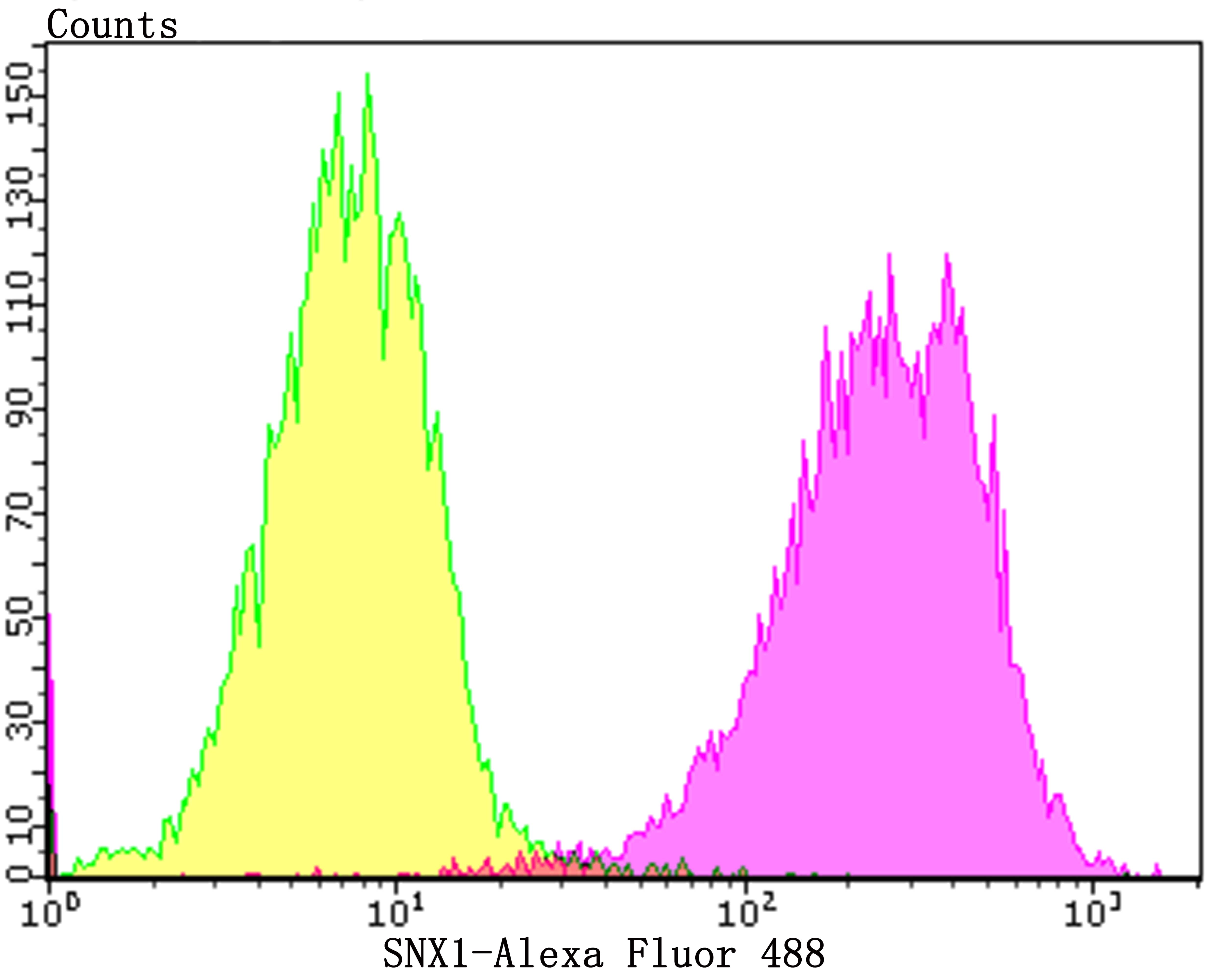 SNX1 Antibody in Flow Cytometry (Flow)