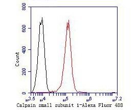 Calpain S1 Antibody in Flow Cytometry (Flow)