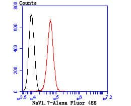 SCN9A Antibody in Flow Cytometry (Flow)