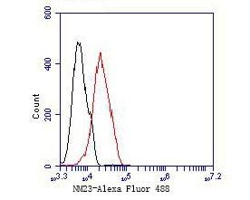 NME1 Antibody in Flow Cytometry (Flow)